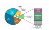 世界可再生能源和废弃沐鸣2官网物发展概况